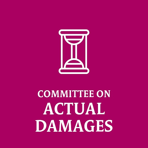 Committee on Actual Damages